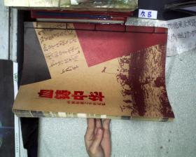 血铸中华 中国抗战之不朽记忆
