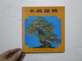 1981年版 小品盆栽