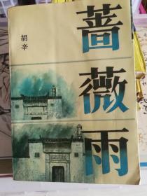 蔷薇雨 (正版,道德与情感问题探索小说)