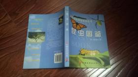 美国最新简明百科全书:昆虫图鉴 【彩色插图】