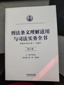 刑法条文理解适用与司法实务全书  第六卷