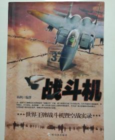 战斗机:世界王牌战斗机暨空战实录