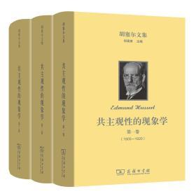 共主观性的现象学(全三卷)(胡塞尔文集)