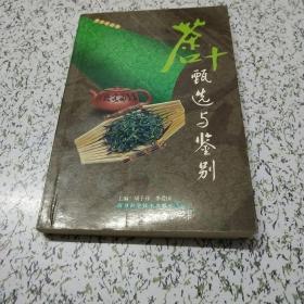 茶叶甄选与鉴别