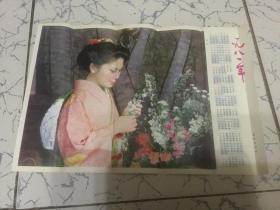 1981年历画 赏花