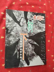 樟树下:姚定范摄影散文集