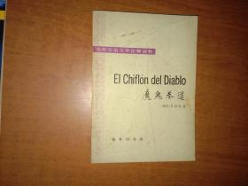 魔鬼巷道 (西班牙文语文学注释读物)【品相如图内页干净自然旧】