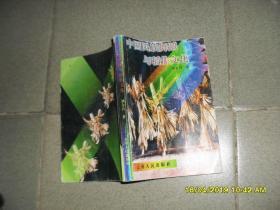 中国民族舞蹈与稻作文化(85品大32开扉页有污渍及赠阅章1997年1版1印2000册212页前多彩色图版)44299