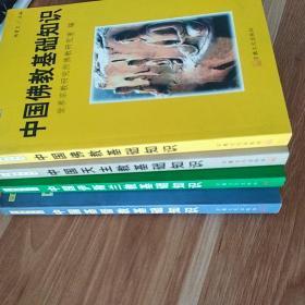 .(宗教知识丛书) 中国伊斯兰教基础知识 . 中国伊斯兰教基础知识 .中国佛教基础知识.中国基督教基础知识(4本合售)