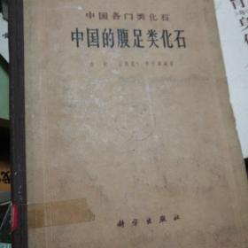 中国的腹足类化石