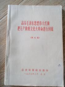 高举毛泽东思想伟大红旗   把无产阶级文化大革命进行到底