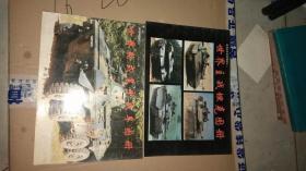 世界主战坦克图册+世界论事装甲战车图册(2本合售)