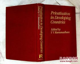 Privatisation in Developing Countries