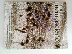 Nature neuroscience 2013/06 外文原版过期自然神经学术论文杂志