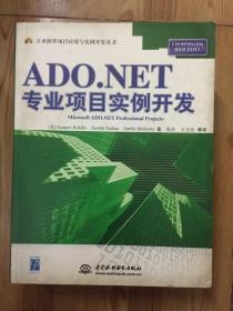 ADO.NET专业项目实例开发