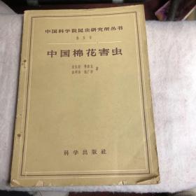 中国棉花害虫