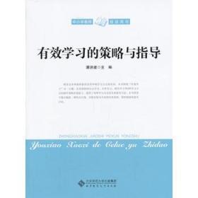 有效学习的策略与指导 正版 潘洪建  9787303163434