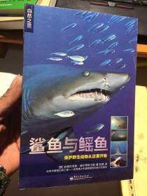 自然之灵 鲨鱼与鳐鱼(全彩)
