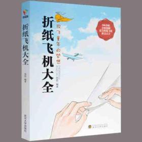 折纸飞机大全:放飞童年的梦想
