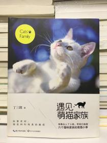遇见萌猫家族