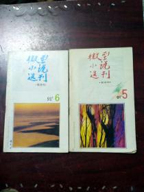 微型小说选刊1991年4、5、6期