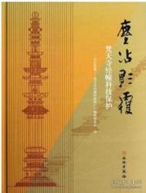 正版 尘沾影覆---梵天寺经幢科技保护  9D09c
