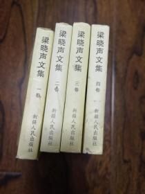 梁晓声文集 第1-4卷