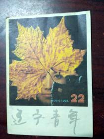 辽宁青年1991年22期