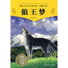 9787534256301/动物小说大王沈石溪品藏书系--狼王梦