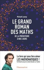 法文原版 Le grand roman des maths : De la préhistoire à nos jours 万物皆数 从史前时期到人工智能,跨越千年的数学之旅 法语 大本