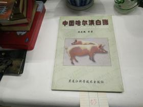 中国哈尔滨白猪