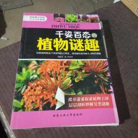 千姿百态的植物谜趣