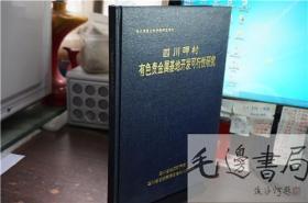 四川呷村有色贵金属基地开发可行性研究