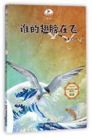 DF载梦的风车·第二辑:谁的翅膀在飞【四色】