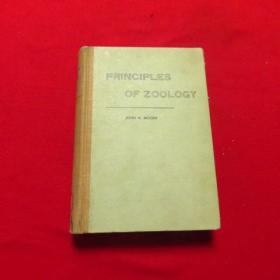 动物学原理  1957年【外文看图】