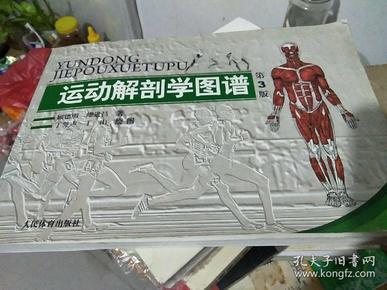 运动解剖学图谱(第3版)