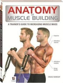Anatomy of Muscle Building 肌肉训练