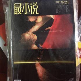 最小说2010.5