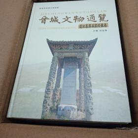 晋城文物通览(全10册)硬精装,全新。