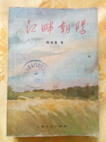 江畔朝阳  (文革小说)