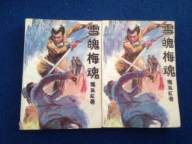 (9-3)独孤红著 武侠小说 雪魄梅魂(2全)