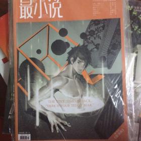 最小说2010.4