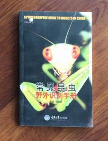 常见昆虫——野外识别手册