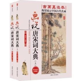 画说唐宋词大典(上、下)全两册古画真迹本 海量展示中国古代名画