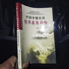 中国少数民族经济发展战略