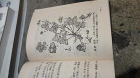 上海常用中草药  【塑精装、插图本 】607s