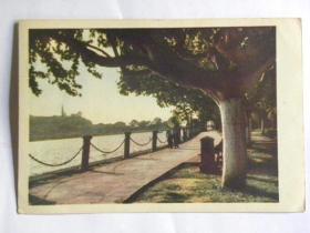 《西湖之春》明信片-湖滨公园(50年代)