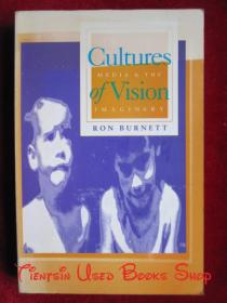 Cultures of Vision: Images, Media, and the Imaginary(英语原版 平装本)视觉文化:图像、媒介与想象力