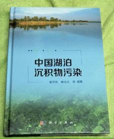 中国湖泊沉积物污染