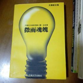 微雨魂魄:三城记小说系列第二辑·台北卷